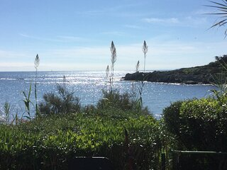 paradis davant del mar