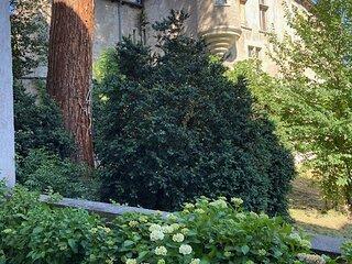 T1 avec magnifique terrasse de 30m2, quartier Vieux Vichy, vue unique