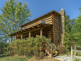Fox and Crow Cabin I Pet Friendly Log Cabin I Less than 10 miles to Asheville