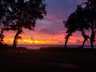 Kauai Kapaa #324 Oceanfront condo Vacation Rental condo by owner OCEAN !!