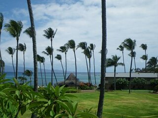 Napili Shores H-167 ocean views with A/C  -  Steps to Napili Bay