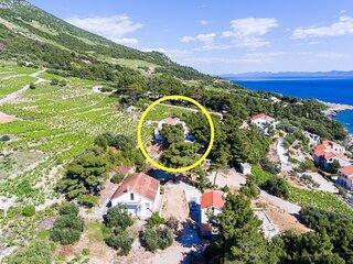 Apartments Villa Dingač-Borak - Two Bedroom Apartment with Terrace