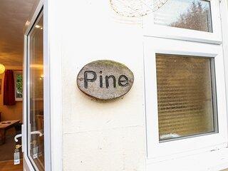 Pine, Faversham