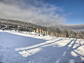 Slopeside Studio in Wintergreen - Ski-In/Ski-Out!
