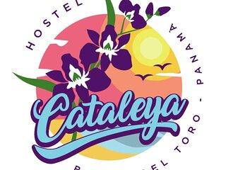 CATALEYA HOSTEL, BOCAS DEL TORO. Dormitorio compartido con bano en suite