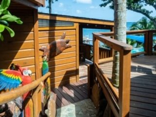 TURTLE BEACH - Ocean Front - 2 Bedroom Seascape Villa -Full Kitchen/Private Deck