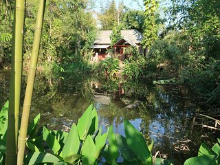 Baan Sammi Nature Retreat: Lychee Lodge, large natural garden with swimming pond