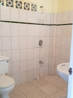 Both studios have wet room styled bathrooms with shower, hand basin and WC