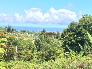 Hale Ilio Himeni -- Ocean Views and Cool Mountain Breezes