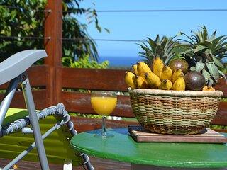 Location saisonnière Villa Jolizévi Réunion