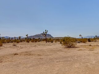 * Marbella Lane - Joshua Tree Secluded in 5 Acres!