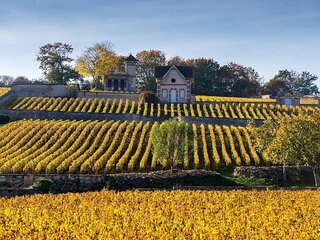 A DREAM FAIRY TALE CHATEAU IN THE FAMED VINEYARDS OF MEURSAULT BURGUNDY