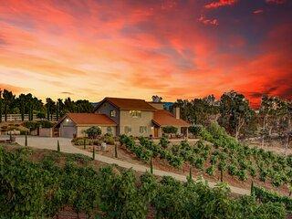 Via Vino Vineyard Estate  -  Hot Air Balloon Views