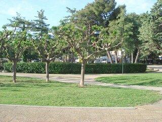 Studio vue Parc General de Gaulle