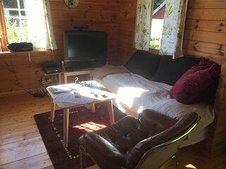 Vardagsrum med TV och Xbox. Utdragbar bäddsoffa