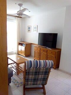 Salón: Zona de estar, TV Samsung 55' y ventilador de techo con mando a distancia.