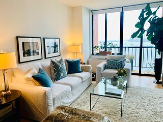 LIGHT AND BRIGHT ONE BEDROOM. DOWNTOWN NYC. GREAT VIEWS!!