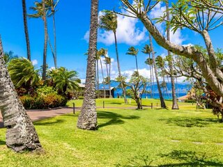 Complete remodel and beautifully decorated for your ideal Maui getaway - On Napi