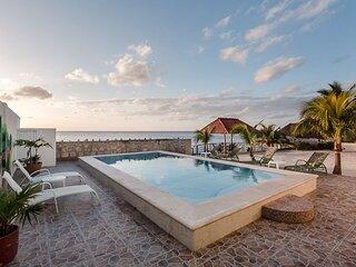 Las Iguanas—Seaside Oasis, Large Ocean Facing Pool, Ocean View