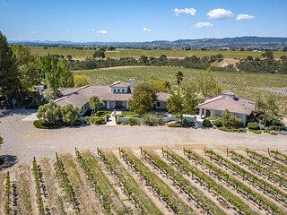 Spacious Vineyard Retreat on 40 Acres with Private Guest House | Sleeps 12