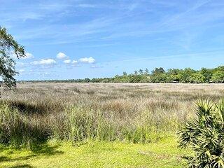 Brockinton Marsh 318