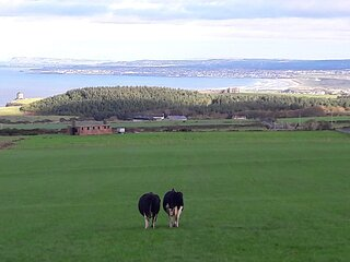 Stunning views at Sam's Cottage