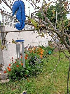 Les sons du jardin