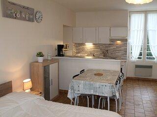 Appartement à 30m des Thermes du Saint Roch à LA ROCHE POSAY
