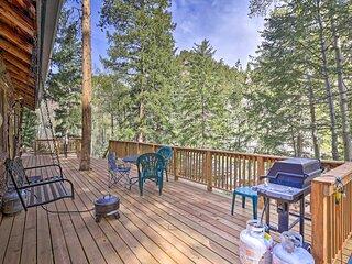 NEW! Idaho Springs Cabin - Walk to Chicago Creek!