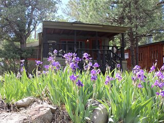 Carter`s Charm Cabin  Carter's Charm Cabin - Cozy Cabins Real Estate, LLC.