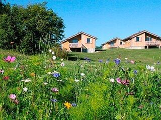 Chalet de Trémontagne - Frêne, holiday rental in Clairvaux-les-Lacs