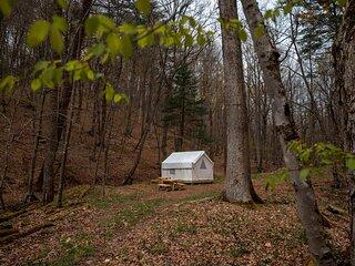 Tentrr State Park Site - Lost River State Park Site E