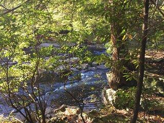 Tentrr State Park Site - Blackwater Falls State Park Site D