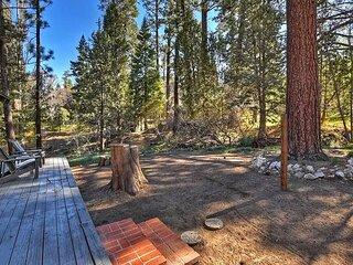 Peaceful Pine Panorama