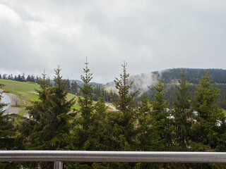 Modern flat in Winterberg with balcony and a great view of the bike park