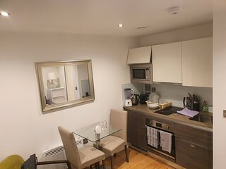 Stunning 1-Bed Apartment in Hayes