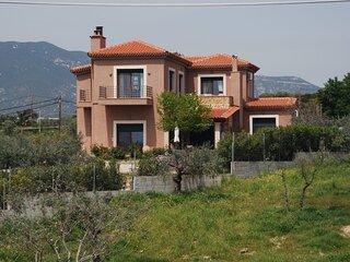 Olive Tree Cottage 2