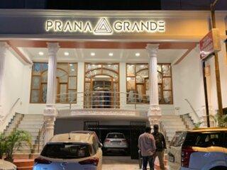 Prana Grande - Ideal for All