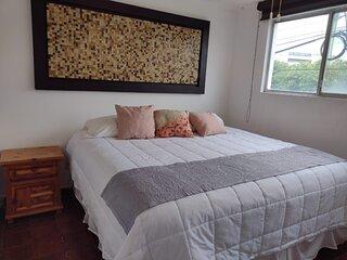 +MS +Suite Confortable + Centrica +Zaragoza