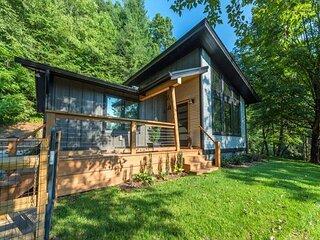 Falling Waters Cabin   Sleek & Stylish One Level Living & Gorgeous Waterfall!
