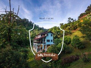 Rest. Pause. Rainforest Retreat