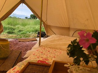Bluebell bell tent in The Broads National Park