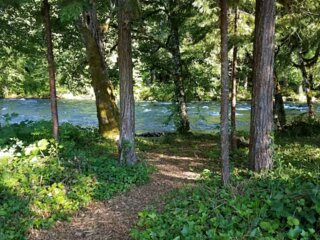 Wooded Bliss Riverfront Sanctuary on the Mckenzie River