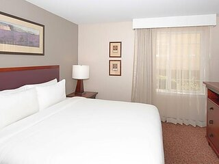 Perfect for Business Travel! Full Kitchen, Laundry, Parking, Fitness Center