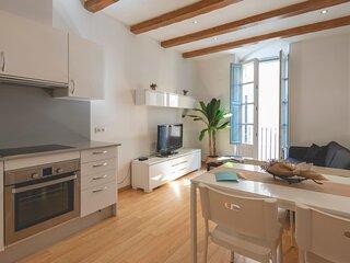 Placa Raims - Holiday apartment in Girona