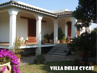 Villa delle Cycas