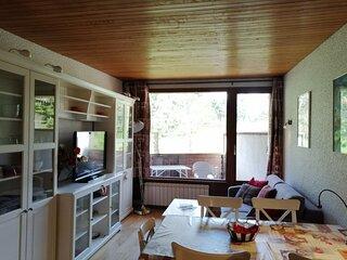 Superbe appartement renove, 2 grandes chambres, balcons sur pistes, porche des