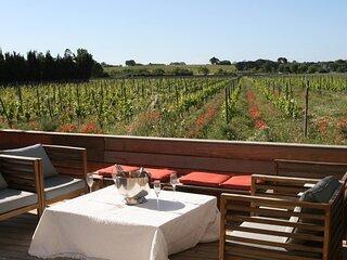 Stunning Villa with Vineyard View in Montpellier