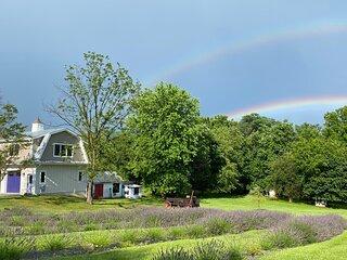 La Soledad Lavender Farm and Guesthouse