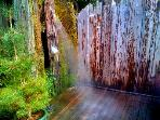 Sequoia Beach Dreamery, Private Vacation Rental in Cazadero